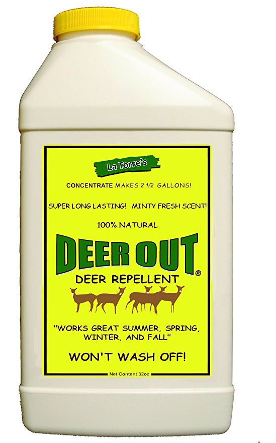 Deer Out 32oz Concentrate Deer Repellent Deer Repellant Deer Resistant Plants Repellent