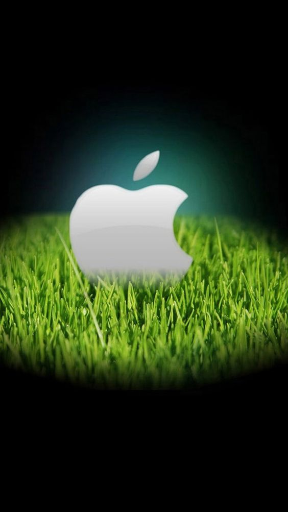 Apple Wallpapers For iPhone 6 234