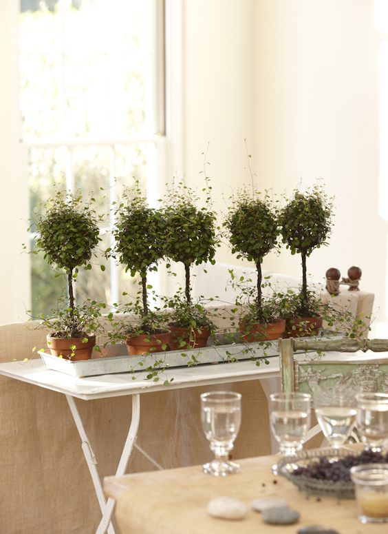 Pinterest the world s catalog of ideas for Table and vine