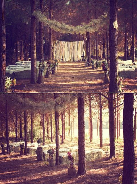 Real Wedding: Caitlin and Josh's Dreamy DIY Enchanted Forest Wedding | Hitched in the Hood
