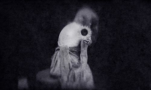 Sunflower-Arslan Ahmedov