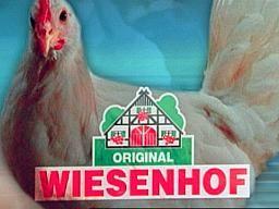 Tierquälerei bei Wiesenhof – SWR-Sendung vom 11. Jan. 2010 darüber wie Hühner in dem Vorzeigeunternehmen leiden müssen