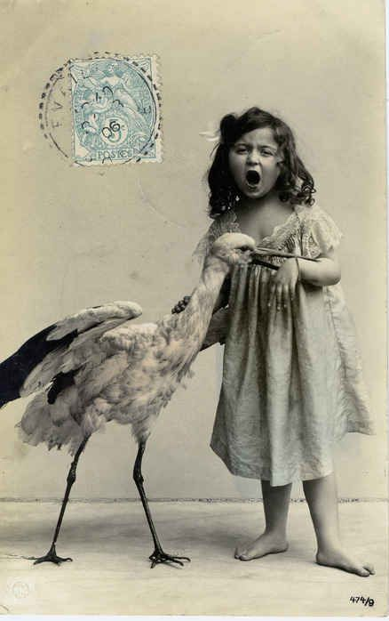 A young girl is attacked by an egret