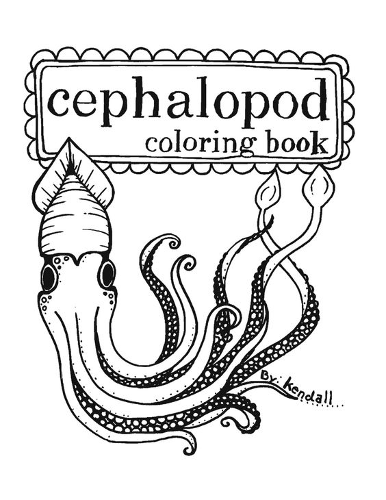 Pin By Sabina Chorley On Cephalopod Coloring Books Coloring Pages Printable Pictures