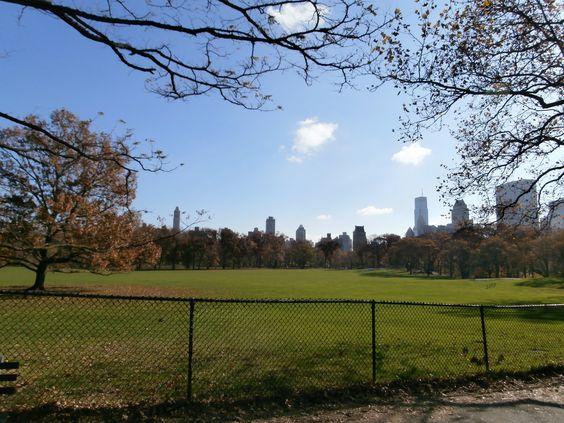 Sol otoñal neoyorquino.