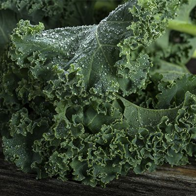 Kale Of all the leafy greens you could enjoy on a diabetes diet, kale is the superstar, according to Smithson. This vegetable is rich in a slew of essential nutrients, including vitamins A, B6, C, K, and folate; the minerals calcium and magnesium; fiber; and flavonoids and other antioxidants. Kale is also very low in carbohydrates, sodium, and cholesterol, the U.S. Department of Agriculture reports.  Smithson adds that kale contains bile acid sequestrants, substances that lower LDL…