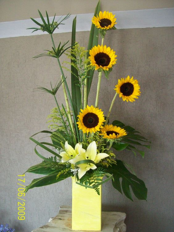 Very cool -- thinking of Megan and her sunflowers! http://tinyurl.com/zu792fk