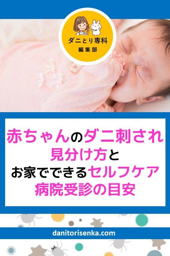 赤ちゃんのダニ刺され 見分け方とお家でできるセルフケア 病院受診の