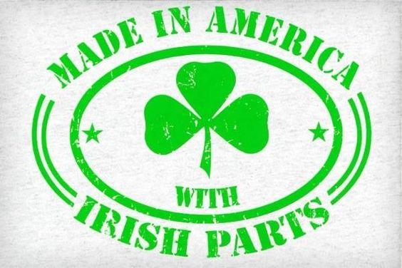 The Irish Life