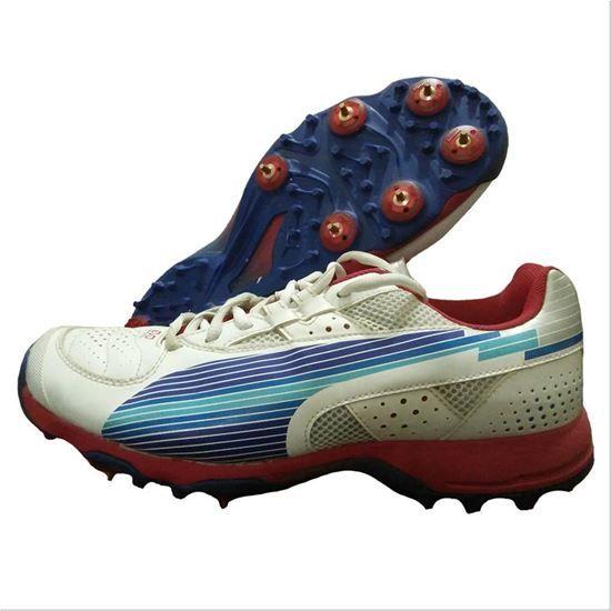Puma Evo Speed Full Spike Cricket Shoes | Puma, Cricket ...