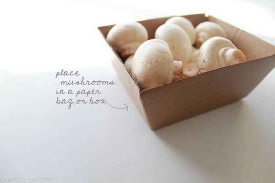 mushrooms should never be stored in plastic; instead, place them into a brown paper bag or a cardboard box to keep them fresh for longer