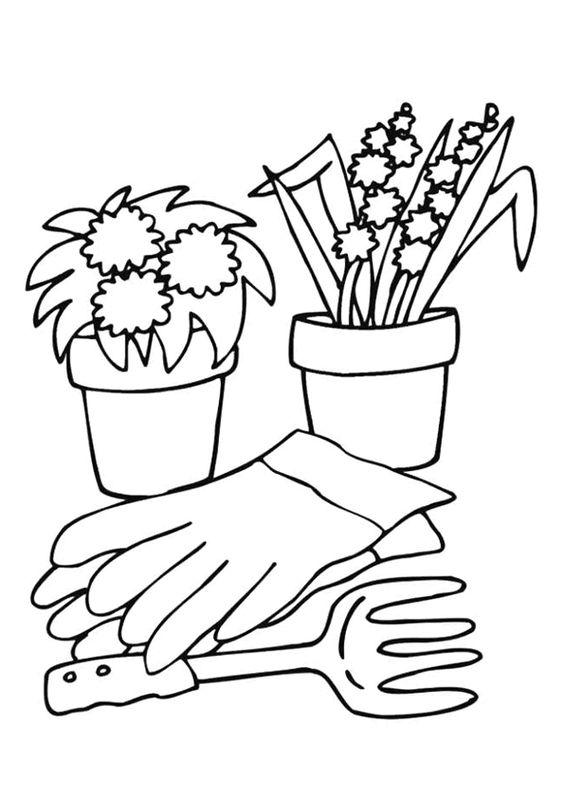 Des fleurs de muguet et un rhododendron en pot avec des ...