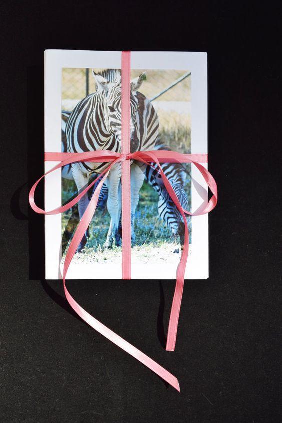 Zebra Photo Cards Set of 20 Zebra Wildlife by MitchiesGalleria