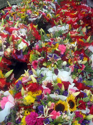 flowers at dallas farmers market