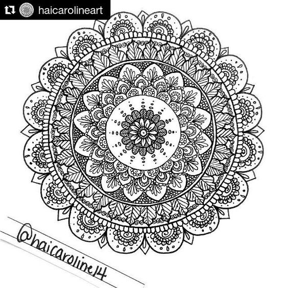 Flower Petals Zentangle And Little Things On Pinterest