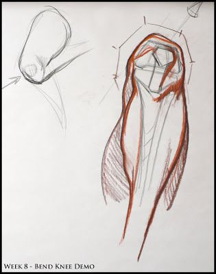 Analytical Figure Drawing SP08: Week 8 - Leg & Knee Structure Demo