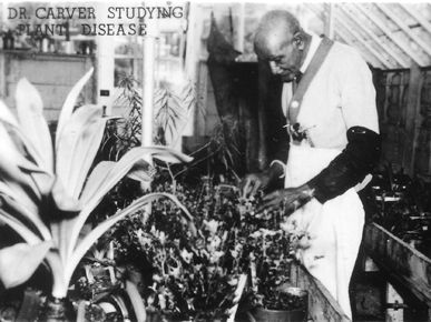 research paper on george washington carver George washington carver (1860s carver's research at the tuskegee institute was designated a national the booker t washington papers, volume 4, pp.