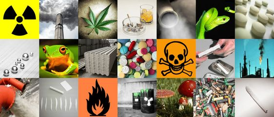Resultado de imagen de Toxicología