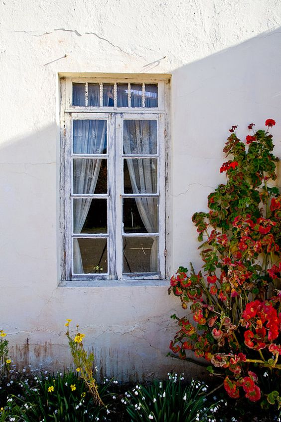 NEW! 20x30 Framed color print by Steve Powers on Etsy.  Old Creamery Window Harmony CA 20x30 Framed by SPowersPhotography, $99.00