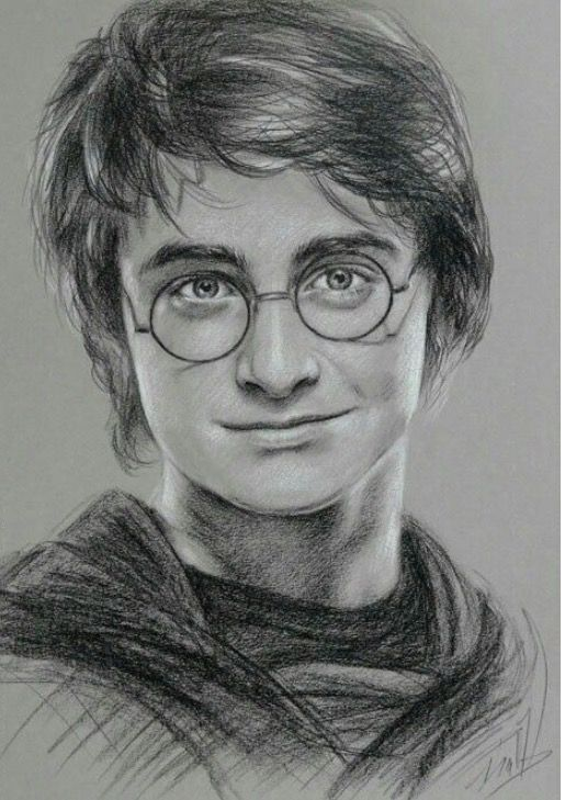 Nothing To Say Its Perfect Harry Potter Portraits Harry Potter