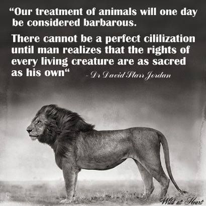 Our treatment of animals will one day be considered barbarous. There cannot be a perfect civilisation until man realises that the rights of every living creature are as sacred as his own.