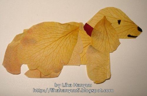 Lika Hanyuu - Oshibana - Flores Secas: [Oshibana] Golden Retriever