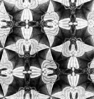 Escher - angeli