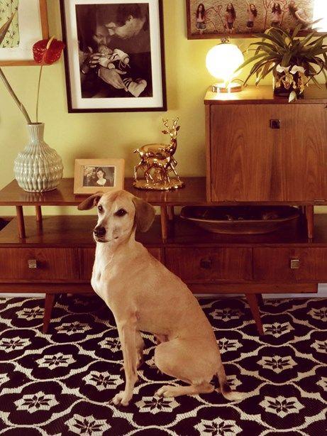 Tapetes Decorativos | collector55.com.br loja de decoração online - Collector55