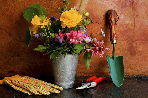 Ferramentas básicas de jardinagem:  Pazinhas de tamanhos variados  Mini ancinhos  Tesoura para poda  Regador  Luva  #Dica: você encontra kits de ferramentas em lojas de jardinagem. São compactos, e práticos.