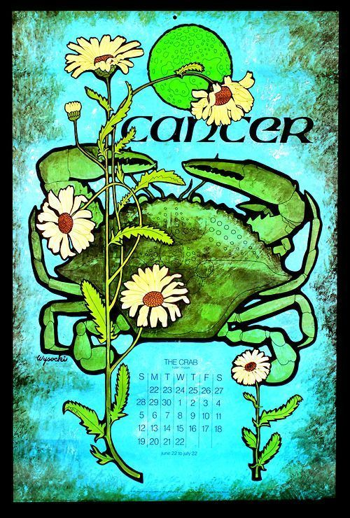 Birthdaynumerology Zodiac Signs Cancer Astrology Cancer Moon Child Cancer