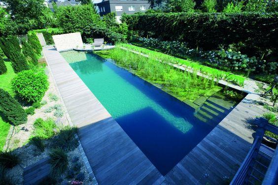 Good naturpool oder schwimmteich mit biologischer natuerlicher wasserreinigung Haus Schwimmteich im Garten Pinterest Swimming pools
