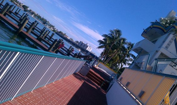 My patented tilt - Shuckers Sports Bar & Waterfront Restaurant, Miami Beach, Florida http://www.youtube.com/user/Cabezababy?feature=mhee