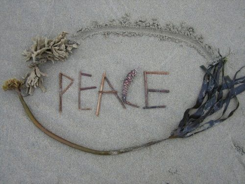 We seek peace, knowing that peace is the climate of freedom.    ~Dwight D. Eisenhower