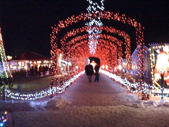 The Christmas Ranch - in Springboro, Ohio | Oh-io | Pinterest ...