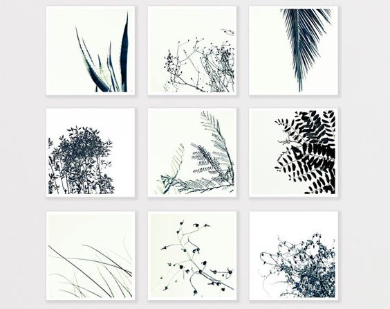 Nature photo print set 8x8 minimalist bulk wall home decor for Bathroom ideas 8x8