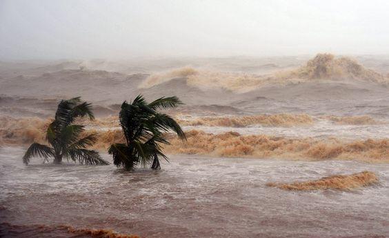 Ondas fortes cobrem palmeiras na cidade de Haikou, na China; tufão Kalmaegi trouxe ventos fortes e destruição na manhã desta terça. Foto: Guo Cheng/Xinhua