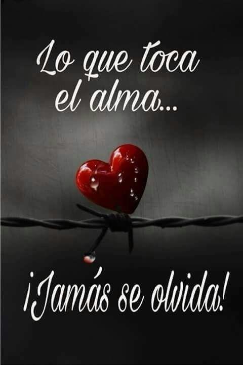 Frases De Amor Imposible Buscar Con Google Pensamientos
