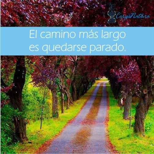 Si quieres llegar rápido, corre. Si quieres llegar lejos, nunca dejes de caminar.