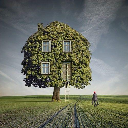 ~ Home Sweet Home ~: Wooden Houses, Surreal Art, Photomanipulation, Favorite Place, Tree Houses, Photo Manipulation, Treehouse, Dariusz Klimczak