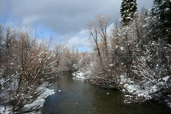 River just north of Camp Richardson, South Lake Tahoe, CA --photo by Valerie Freer, not to be used for commercial purposes
