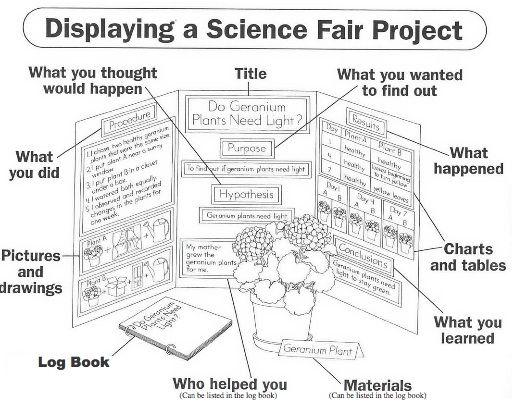 science fair labels templates