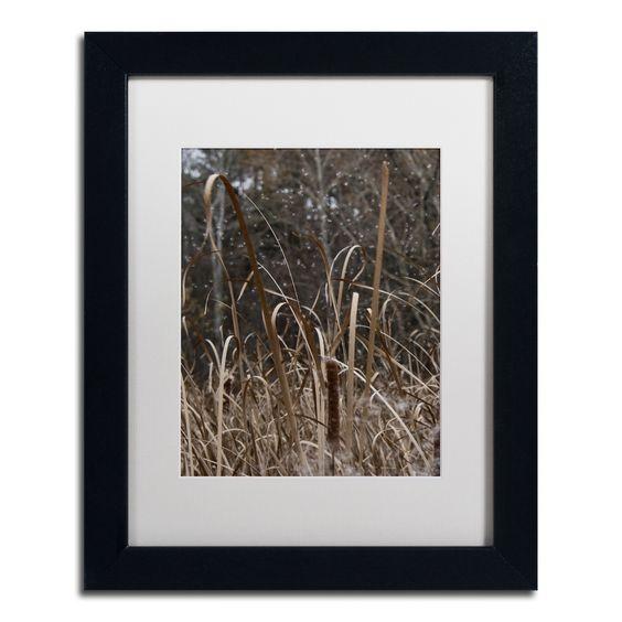 Cattail Seeds in Flight by Kurt Shaffer Matted Framed Photographic Print