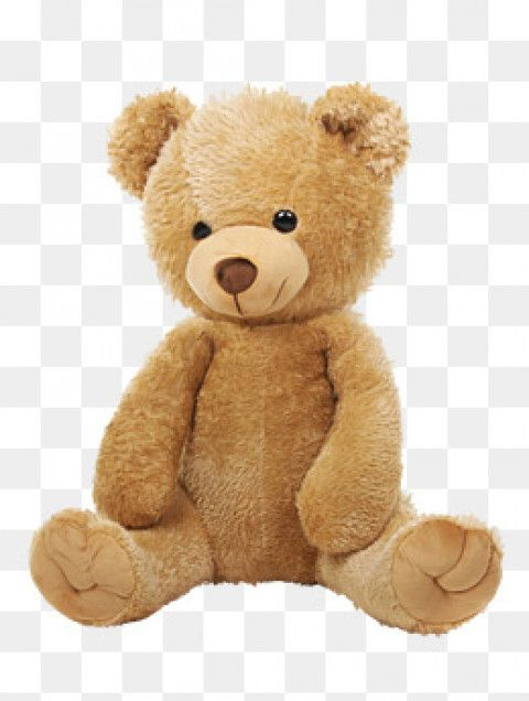 Brown Cute Teddy Bear Png Images Transparent Get To Download Free Nbsp Brown Teddy Bear Nbsp Transparent Png V Teddy Bear Images Brown Teddy Bear Bear Images