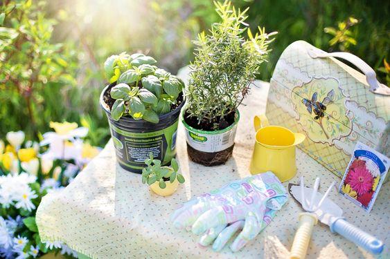 Kräutergarten leicht gemacht - es gibt nichts besseres als frische Kräuter in unseren Gerichten - mit einem selbstgemachten Kräutergarten geht das ganz leicht! #kräutergarten #basilikum #petersilie #salbei #urbangardening