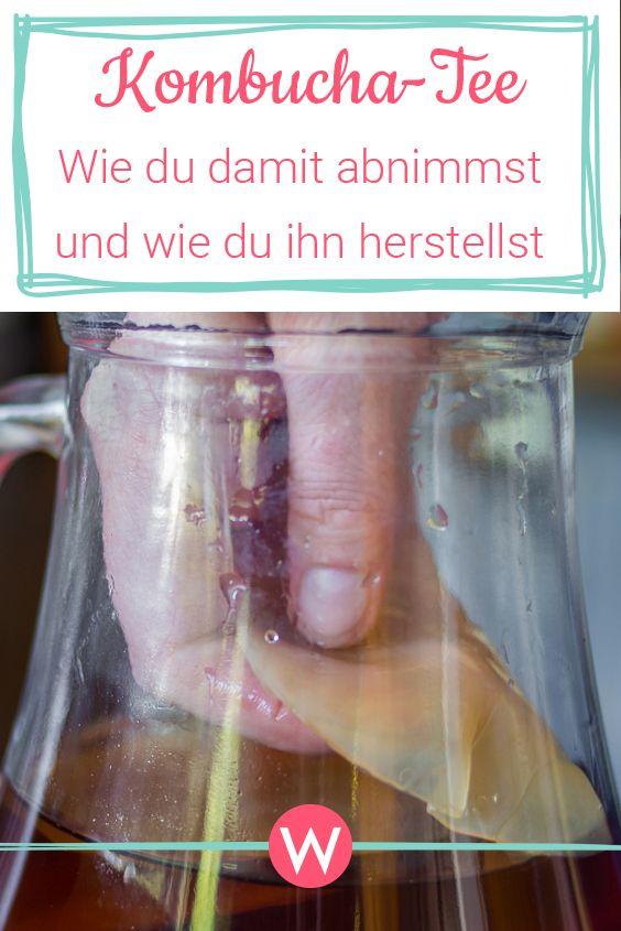 Kombucha Pilz zur Gewichtsreduktion