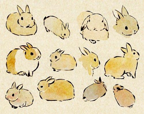 兔子。-----日本画师usao(兎尾@taiga15)的动物插画。