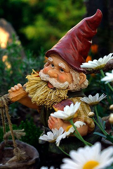 don't know why but every since i started to watch the amazing race i like garden gnomes.: