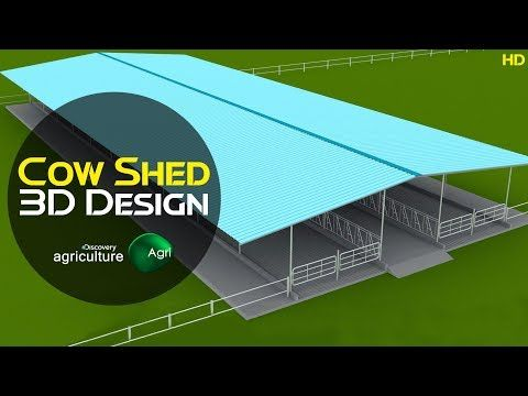 Cow Shed Design 3d Cattle Farm 3d Animation Design Discovery Agriculture Youtube Cow Shed Design Cow Shed Shed Design