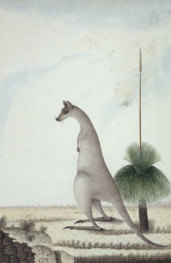NaturalHistoryMuseum_015156_IA.jpg 1878×2894 пикс: