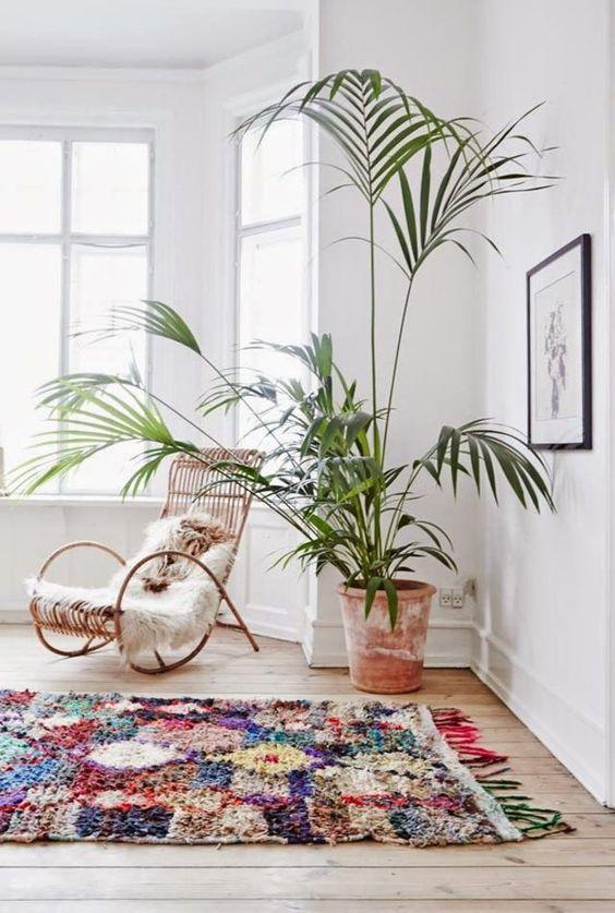quel tapis de salon coloré choisir pour le salon avec plante verte: